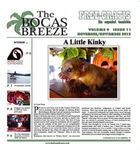 November 2012: Volume 9, Issue 11