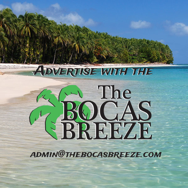 the-bcocas-breeze-advertise-with-us