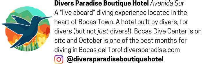 Divers Paradise Hotel advertisement