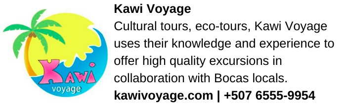 Kawi Voyage