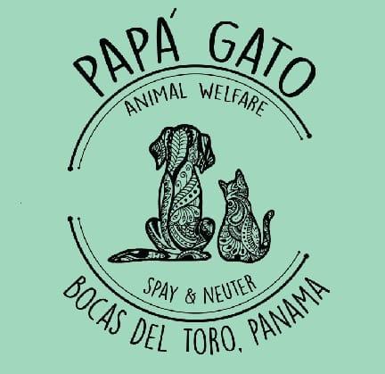 the logo for Papa Gato animal welfare