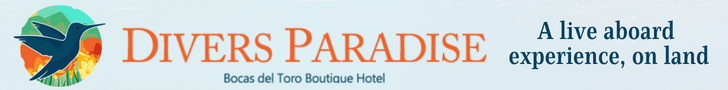 divers paradise boutique hotel a live baord experience on land