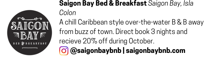 Saigon Bay Bed and Breakfast advertisement