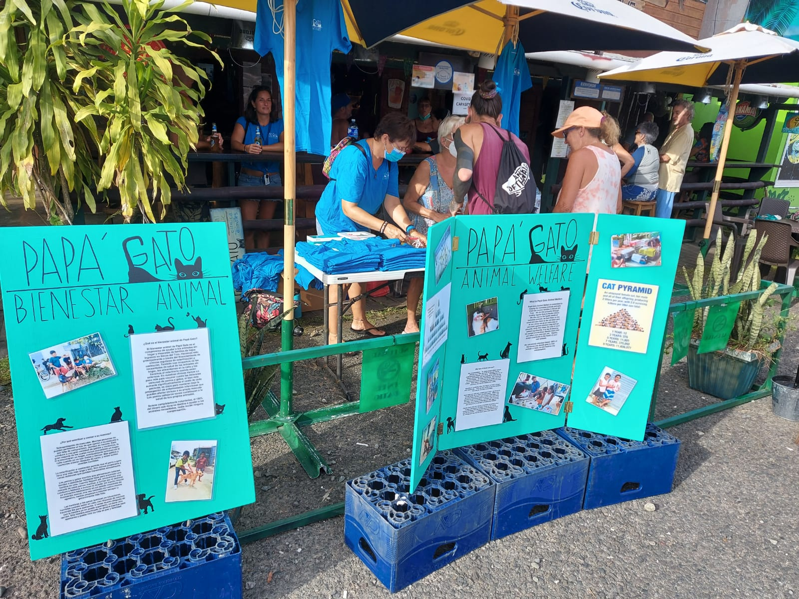 people visiting a fundraiser for Papa Gato Animal Welfare
